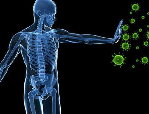 ¿Cómo mejorar tu sistema inmunitario?